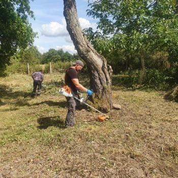 Realizacje: Usługi porządkowe oraz ogrodnicze